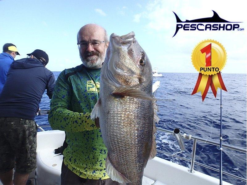 pesca valencia pescashop denton 6.67kg