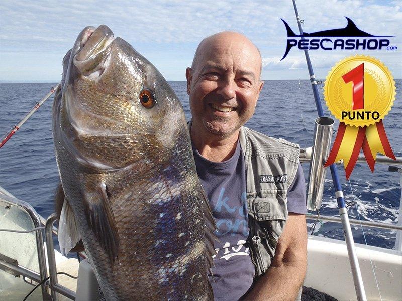pesca valencia pescashop denton 5.49kg