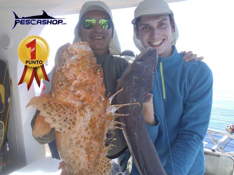 pesca valencia pescashop gallineta 2.15kg