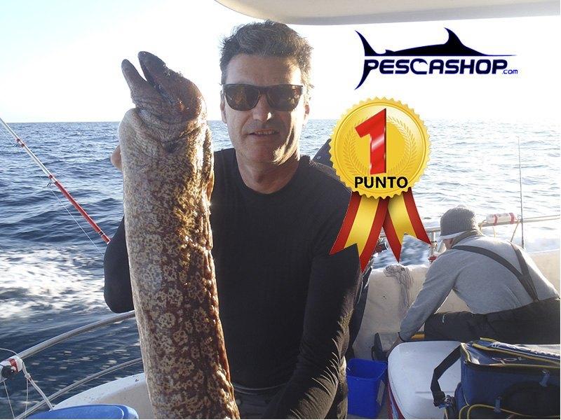 pesca valencia pescashop morena