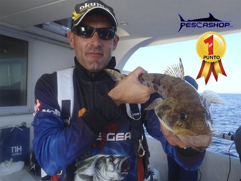 pesca valencia pescashop pez lagarto 1.12kg