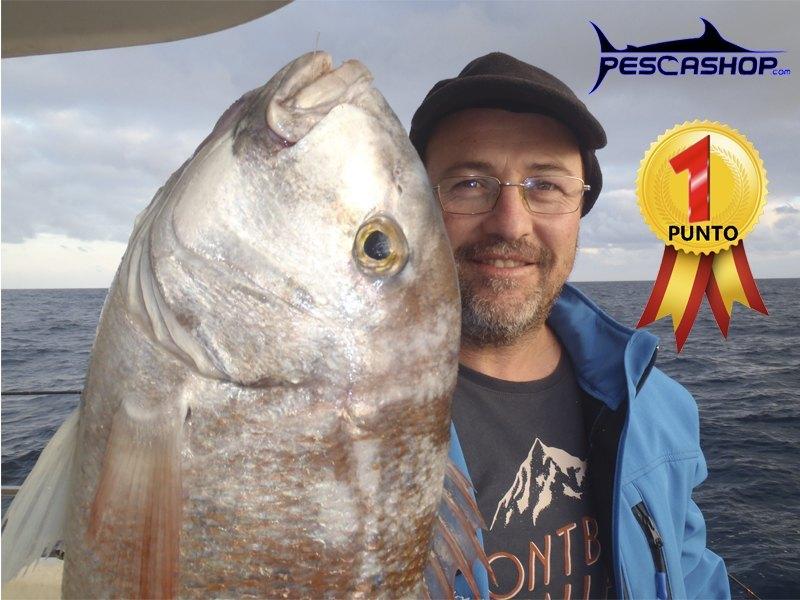 pesca valencia pescashop pargo blanco 3.96kg