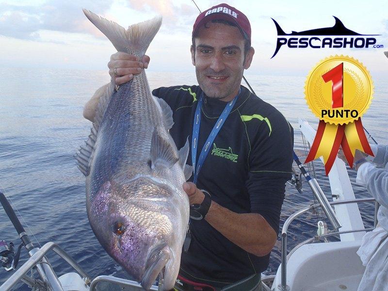 pesca valencia pescashop denton 5.48kg