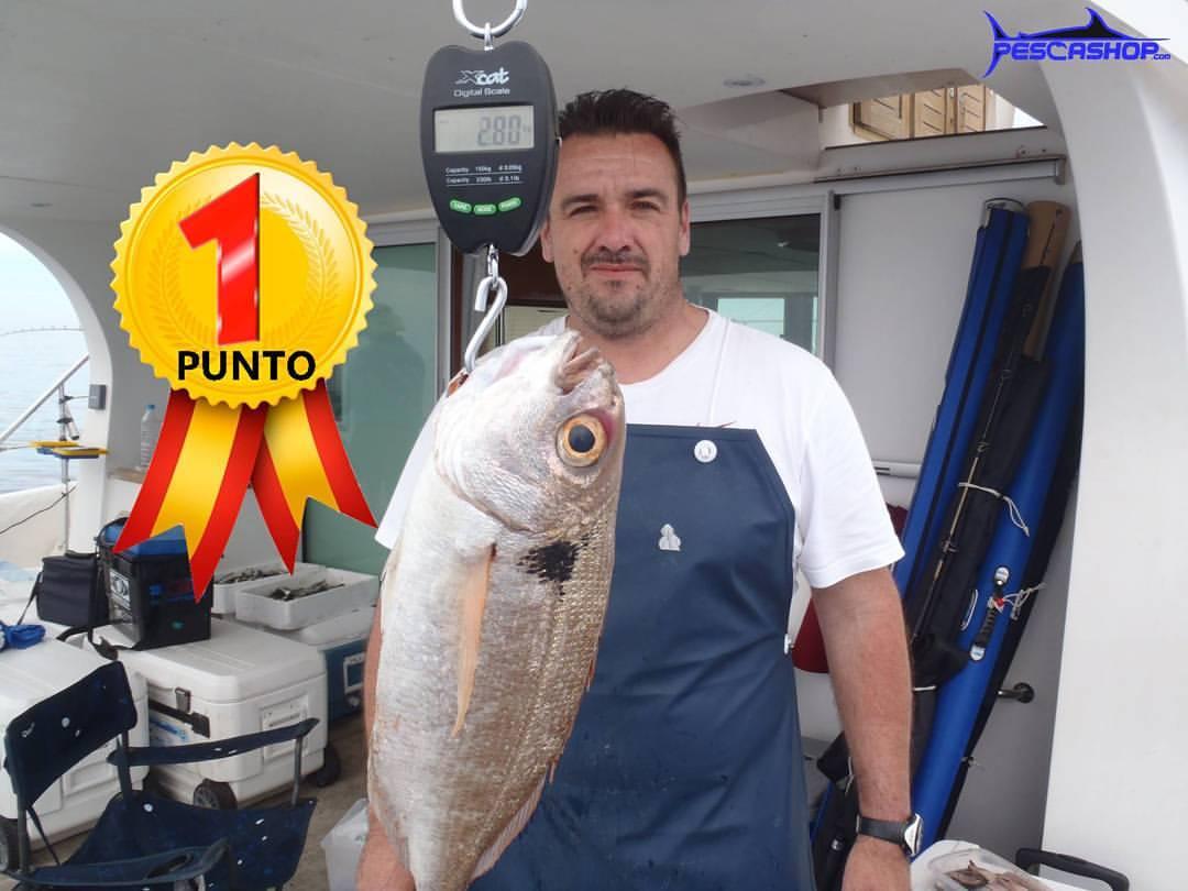 pesca valencia pescashop besugo 2.800kg
