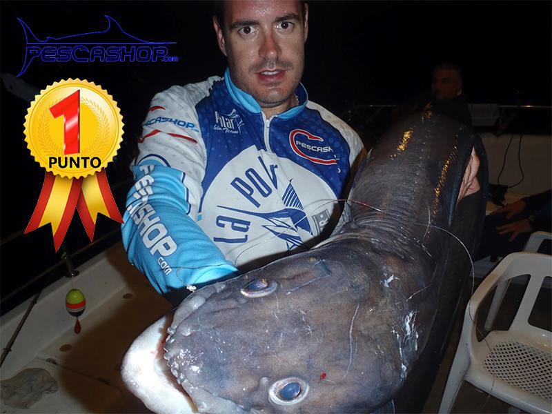 pesca valencia pescashop congrio 13.080kg