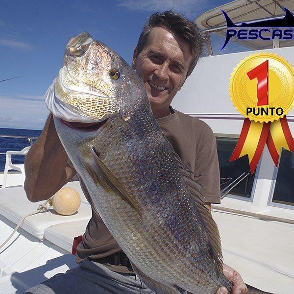 pesca valencia pescashop dentón 5.780kg