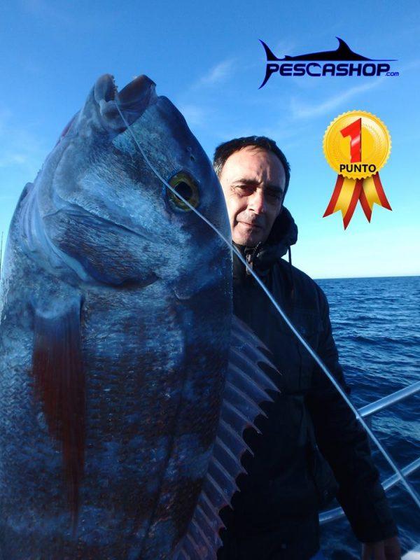 pesca valencia pescashop pargo 3.040kg