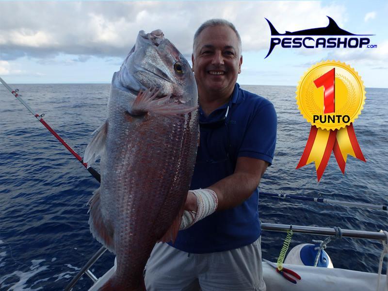 pesca valencia pescashop pargo 4.300kg