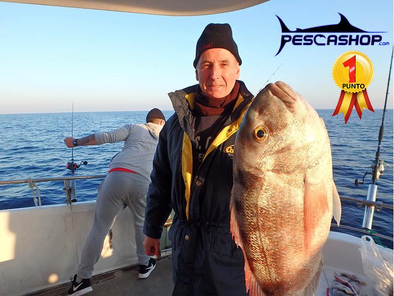 pesca valencia pescashop pargo 4.380kg
