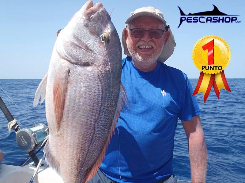pesca valencia pescashop pargo 4.690kg