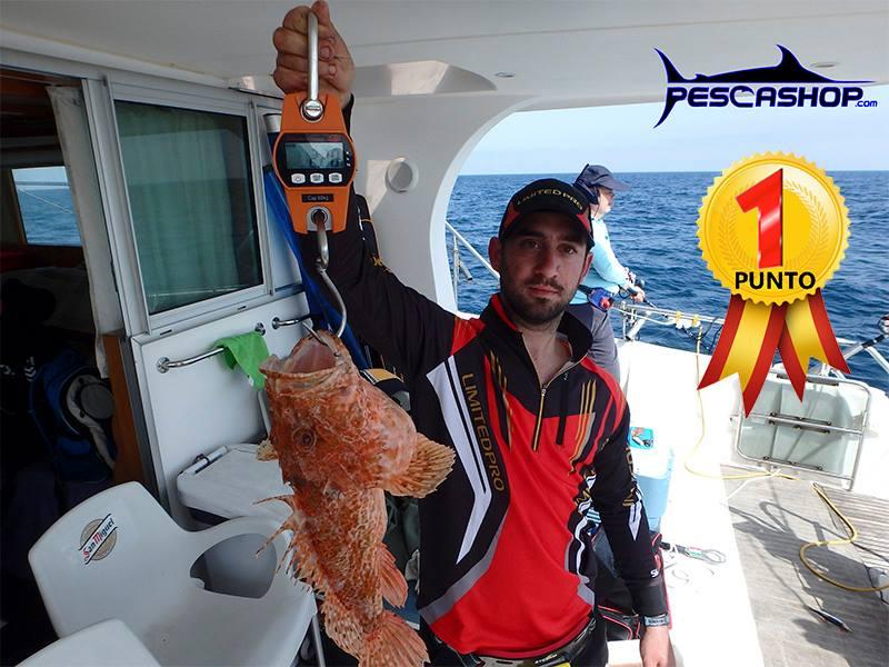 pesca-valencia-pescashop-gallineta-2,470kg