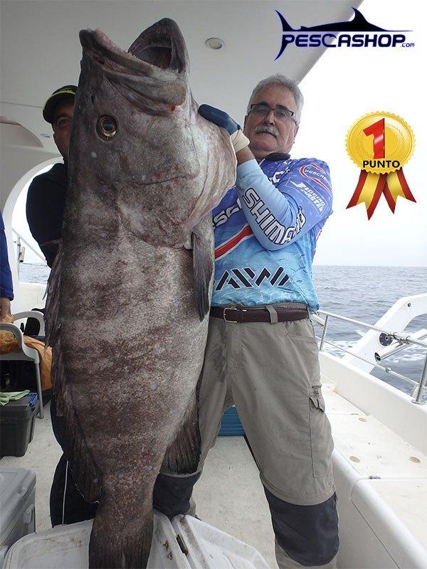 pescashop-mero-denton